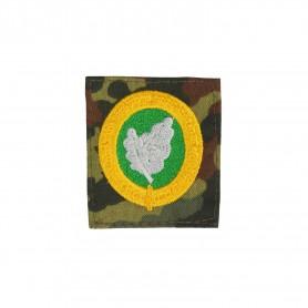 Bw Sonderabzeichen für EGB Kräfte grüner Grund