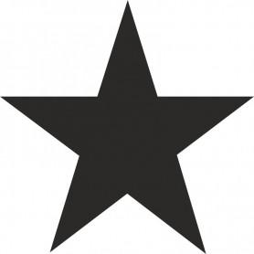 Beschriftungsschablone Stern 7inch (180mm)