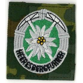 BW Abzeichen Heeresbergführer farbig auf tarn
