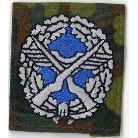 BW Abzeichen Sicherungstruppenführer Luftwaffe farbig auf tarn